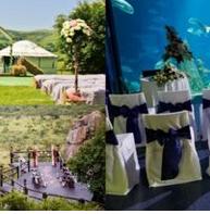 agenangka toto 10 Venue Fantastis di Dunia untuk Menggelar Pernikahan. Salah Satunya, Aquarium Raksasa!